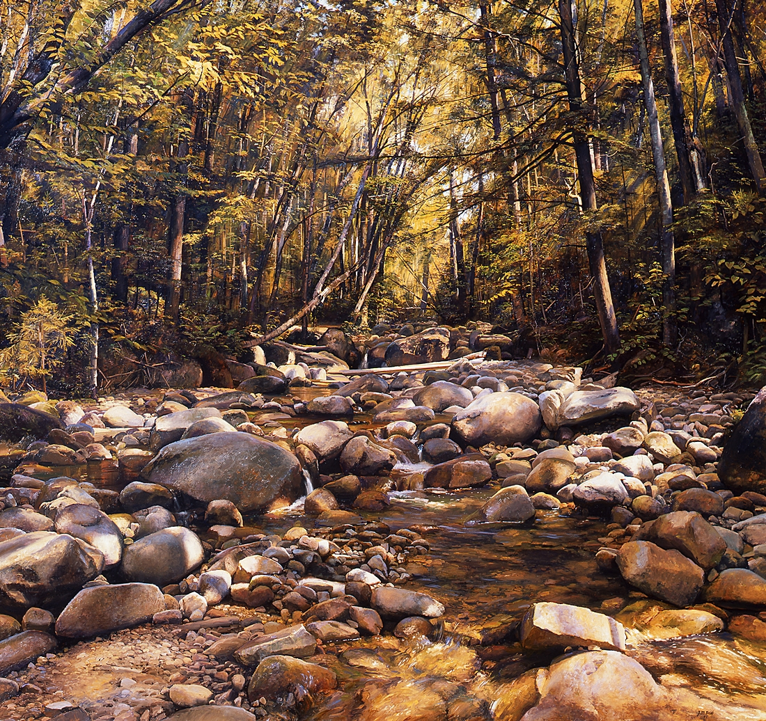 2  Dappled Brook, 2007, oil on linen, 48 x 51 inches