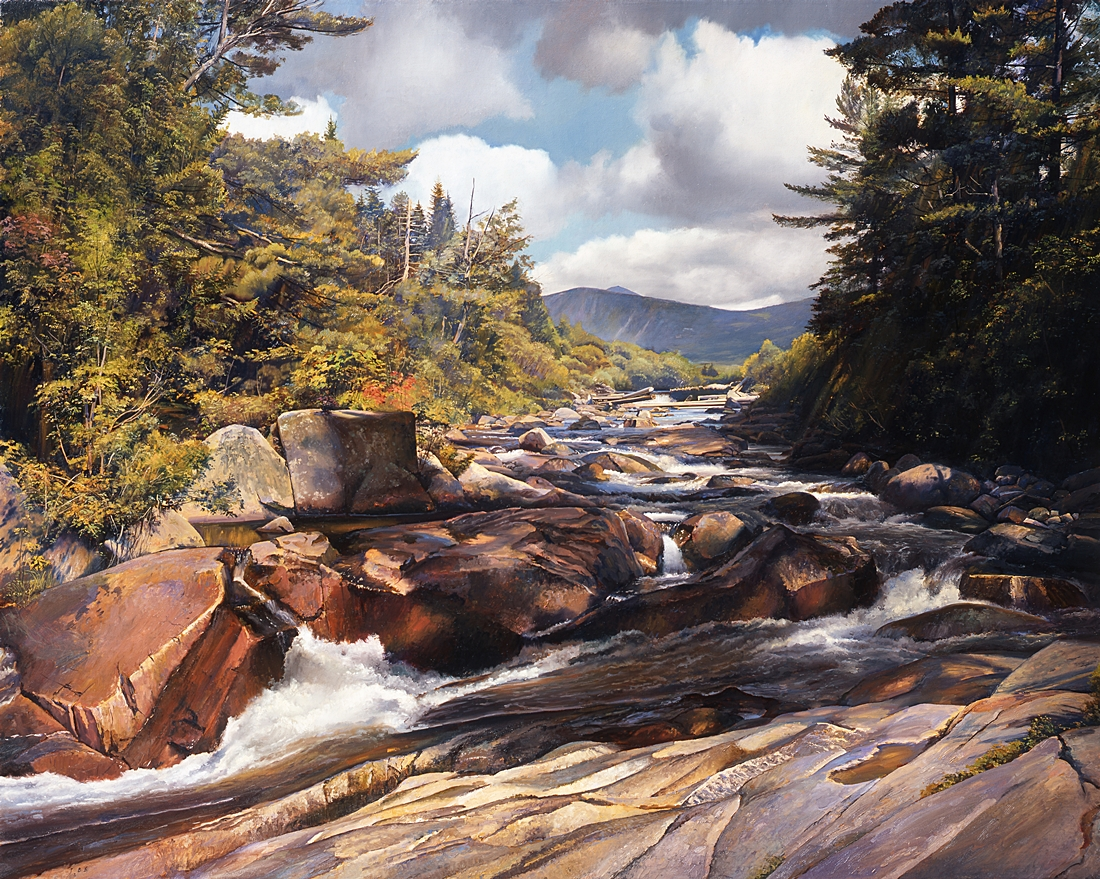 8 The Toll Dam, Baxter Park, Maine, 2004, oil on linen, 48 x 60 inches
